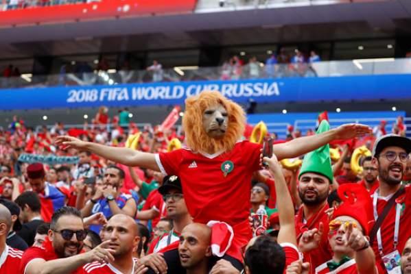 رغم الإقصاء .. هذا ما يحضره الجمهور المغربي للمنتخب في مباراة إسبانيا